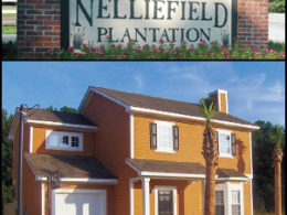 Nelliefield Plantation Neighborhood in Daniel Island, SC